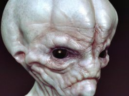 10 Signs Alien Life Exists
